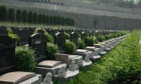 墓地风水的八大富贵格局