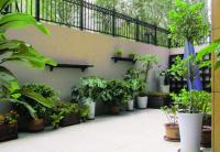 种植庭院植物,需注意的风水事项