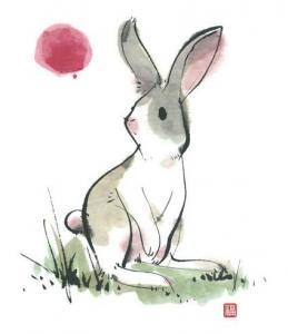 属兔名字里带什么好