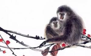 梦到猴子是什么意思